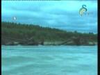 كاندامو نهر الجمود