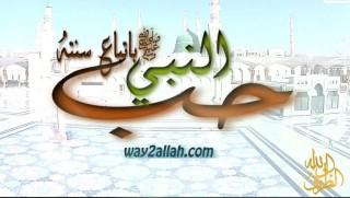 حب النبي باتباع سنته