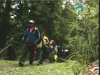 نشيد الأدغال 1 (الغابة الصينية)