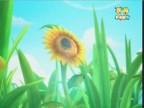 زهرة دوار الشمس  (حكايات في الادغال)