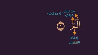 صحح تلاوتك (أوائل سورة لقمان) / الشيخ علي زيادة
