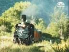 الحلقة 8 (عبر القطار)