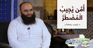 أمن يجيب المضطر | د.غريب رمضان