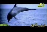 مجيب السائلين إنشاد الشيخ مقدام الحضري