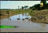 7- نهر الكفاح (انهار افريقيا)