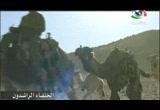 2- مولد أبو بكر الصديق (الخلفاء الراشدون)