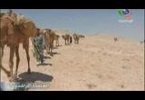 7- فتوح الشام والعراق (الخلفاء الراشدون)