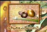 البصل نبات معروف (قناة روضة للأطفال)