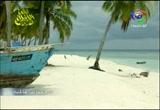 3- جزر المالديف (محطات عالمية)