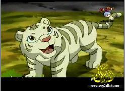 الحلقة 1 (النمر الأبيض)