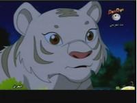 الحلقة 8 (النمر الأبيض)