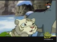 الحلقة 10 (النمر الأبيض)