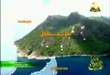 3- جزيرة الطيور (جزر سيشل)