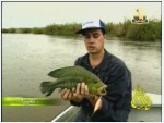 2- نامبيا (صيادو السمك)