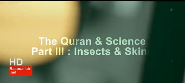 Quran & Science Part III Insects & Skins