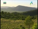 جبال البرينية(حراس الطبيعة)