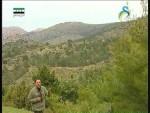 جبال الاباليشيان(رحلة جيلوجية)