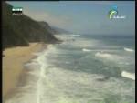 الشاطئ(العين الشاهدة)