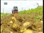 حلقة 1 (المزارع الأسترالية)