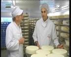 أجبان رعاة الباسك(شرائح الجبن)