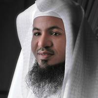 الشيخ محمد بن على الشنقيطي