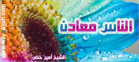 الناس معادن ( 31/1/2012 ) فضفض مع الشيخ أمير خضر