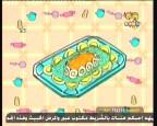إضغط لمشاهدة ''عيش البيض  (استمتعوا بالطبخ) ''