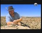 إضغط لمشاهدة ''قطر (صحاري الارض) ''