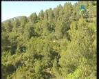إضغط لمشاهدة ''المناطق الريفيه في الاراجون(محميات طبيعية) ''