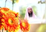 إضغط لمشاهدة ''ابتسامته ... صلى الله عليه وسلم / الشيخ نبيل العوضي ''
