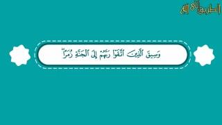 إضغط لمشاهدة ''إلى الجنة زمراً / الشيخ هاني حلمي ''