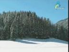 إضغط لمشاهدة ''رحلة الي البرد(الكوكب العامض) ''