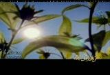 إضغط لمشاهدة ''سيأتى الضياء أنشاد أبو عبدالملك وطارق أبو زياد ''