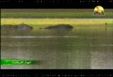 إضغط لمشاهدة ''6- النهر الجاري (انهار افريقيا) ''