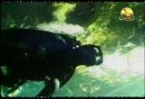 إضغط لمشاهدة ''الماء هبة الله (أروع المحميات) ''
