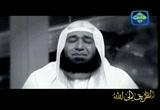 قصة إسلام الأخت مريم الأمريكية للشيخ محمود المصري (عبرة) مؤثرة