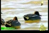 إضغط لمشاهدة ''3- بحيرة بيتيلاس (محميات طبيعية) ''