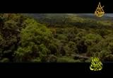 إضغط لمشاهدة ''فيض الدعاء للشيخ محمد المحسني ''