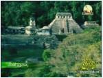 إضغط لمشاهدة ''6- المايا وحضارة الأبار (رحلة تروي العجائب) ''