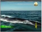 الفيلم الوثائقي عمالقة البحار