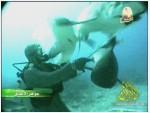 إضغط لمشاهدة ''9- مطعموا القرش (جواهر الأعماق) ''