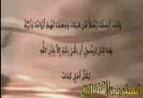 عصفوران في العش / الشيخ محمد الصاوي