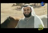 إضغط لمشاهدة ''من بنات الريح إنشاد مشاري راشد ''