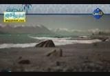 إضغط لمشاهدة ''رؤية لعمر بن عبد العزيز ( نبضة ) ''