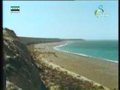 إضغط لمشاهدة ''علي الضفاف(عالم المياه) ''