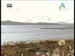 إضغط لمشاهدة ''الساحل الأطلسي(رحلة جيلوجية) ''