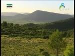 إضغط لمشاهدة ''جبال البرينية(حراس الطبيعة) ''