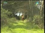 إضغط لمشاهدة ''جزر كوريل وكمشتكة(من براري الشرق) ''