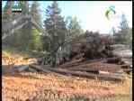 إضغط لمشاهدة ''ثورة التقنية البرية(البراري الكندية) ''
