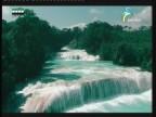 إضغط لمشاهدة ''جزيرة الأحلام جربة( وتبقي تونس خضراء) ''